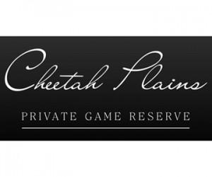 Cheetahs Plain.jpg