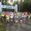The Starting Point of the Momentum Knysna Forest Marathon and half marathon.JPG