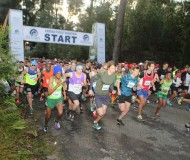 The Starting Point of the Momentum Knysna Forest Marathon and half marathon.JPG