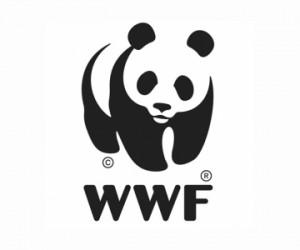 WWFlogo.jpg