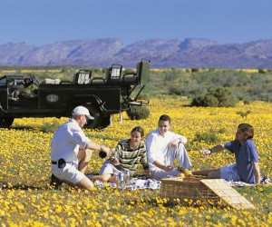 Bushmans Kloof PICNIC IN FLOWERS.JPG