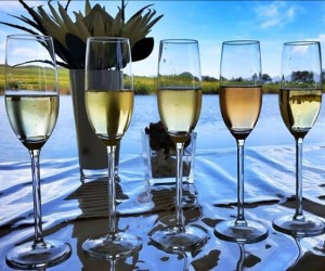 Bubblies on the Breede River.jpg
