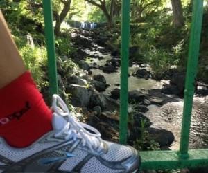 57877f8b59f5c5d91a70c34d7151ae7d--red-socks-kelli-ohara.jpg
