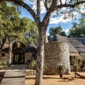 Tintswalo Safari Lodge-Main Lodge Entrance-01.jpg