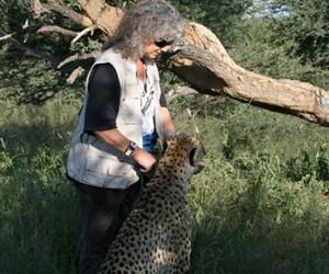 cheetah_285.jpg